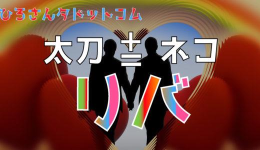 【ゲイ・ウリ専(ウリセン)用語】ウケ(受け、ネコ)、タチ、リバの意味とは